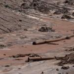Desentupidora Curitiba – Destruição Ambiental