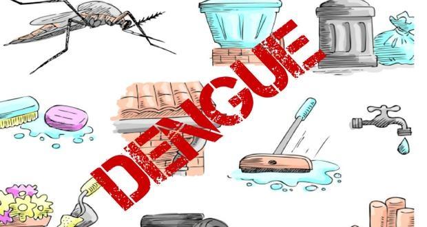 Desentupidora Curitiba Combata a Dengue Já!