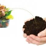 DESENTUPIDORA CURITIBA, 5 resíduos que podem ser compostados e você não sabia!'