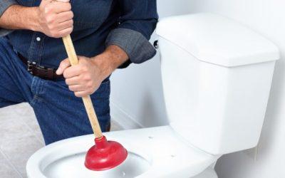 Entenda o porquê vasos sanitários entopem
